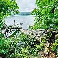 Lake Santeetlah In Great Smoky Mountains North Carolina by Alex Grichenko