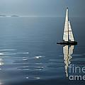 Sailing Boat by Mats Silvan