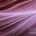 Antelope Canyon by Daniel  Knighton