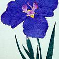 Japanese Flower by Japanese School
