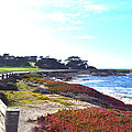 17 Mile Drive Shore Line II by Barbara Snyder