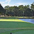 17th Tee by Phill Doherty