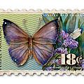 18 Cent Butterfly Stamp by Amy Kirkpatrick