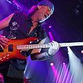 Deep Purple by Jenny Potter