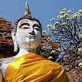 Thailand, Ayutthaya by Cindy Miller Hopkins