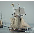 1812 Pride Of Baltimore II by Marcia Lee Jones