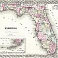 1855 Colton Map Of Florida by Paul Fearn