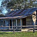 1860 Log Cabins by Linda Phelps
