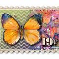19 Cent Butterfly Stamp by Amy Kirkpatrick