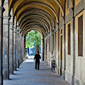 Europe, Italy, Lucca by Terry Eggers