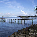 Melbourne Beach Pier In Florida by Allan  Hughes