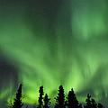 The Aurora Borealis by John Shaw