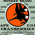 1900 Honker Cranberries by Historic Image
