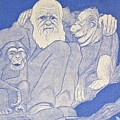 1909 Cartoon Darwin With Apes Detail by Paul D Stewart