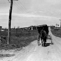 1920s 1930s Amish Man Driving Buggy by Vintage Images