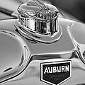 1929 Auburn 8-90 Speedster Hood Ornament 2 by Jill Reger