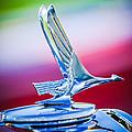 1931 Studebaker President Four Seasons Roadster Hood Ornament by Jill Reger