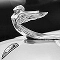 1933 Plymouth Hood Ornament -0121bw by Jill Reger