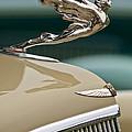 1935 Cadillac Convertible Hood Ornament by Jill Reger