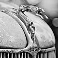 1936 Ford Cabriolet Hood Ornament - Emblem by Jill Reger