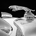 1937 Jaguar Prototype Hood Ornament -386bw55 by Jill Reger