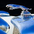 1937 Jaguar Prototype Hood Ornament -386c55 by Jill Reger