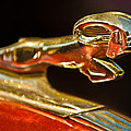 1939 Dodge Business Coupe V8 Hood Ornament by Jill Reger