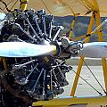 1943 Boeing Super Stearman by Barbara Snyder