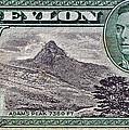 1946 Ceylon - Sri Lanka - Stamp by Bill Owen