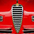 1949 Alfa Romeo 6c 2500 Ss Pininfarina Cabriolet Grille by Jill Reger