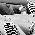 1950 Jaguar Xk120 Roadster Grille 2 by Jill Reger