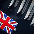 1951 Jaguar Proteus C-type British Emblem by Jill Reger