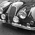 1951 Jaguar Xk120 In Black And White by Gill Billington