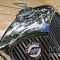 1951 Riley by Dennis Hedberg