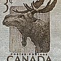 1953 Canada Moose Stamp by Bill Owen