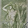 1954 Czechoslovakian Farm Woman Stamp by Bill Owen