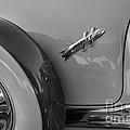 1954 Hudson Hornet by Dennis Hedberg