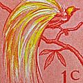 1954 Netherlands New Guinea Paradise Bird Stamp by Bill Owen