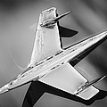 1955 Chevrolet Belair Nomad Hood Ornament -037bw by Jill Reger