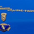 1956 Alfa Romeo Sprint Veloce Coupe Emblem by Jill Reger