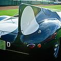 1956 Jaguar D-type by Jill Reger