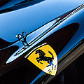 1957 Ferrari Tr 250 - 0714 Emblem by Jill Reger