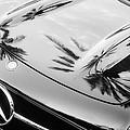 1957 Mercedes-benz 300sl Grille Emblem -0167bw by Jill Reger