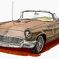 1957 Thunderbird by Jack Pumphrey