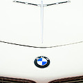 1958 Bmw 507 Roadster Hood Emblem by Jill Reger