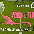 1958 Netherlands Antilles Flamingoes Stamp - Curacao Postmark by Bill Owen