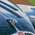 1960 Jaguar Xk 150s Fhc Hood Ornament 3 by Jill Reger