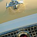 1960 Nash Metropolitan 3 by Jill Reger
