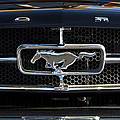 1965 Shelby Prototype Ford Mustang Hood Ornament by Jill Reger