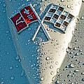 1966 Chevrolet Corvette Sting Ray Hood Emblem by Jill Reger